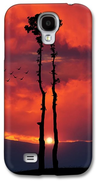Amazing Sunset Galaxy S4 Cases - Two Oaks together in the field at sunset Galaxy S4 Case by Bess Hamiti