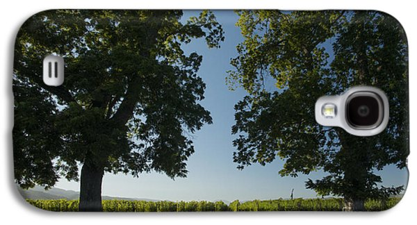 Wine Barrel Photographs Galaxy S4 Cases - Two Old Friends Galaxy S4 Case by Jon Neidert