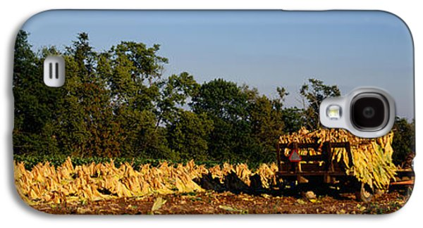 Two People Harvesting Tobacco Galaxy S4 Case by Panoramic Images
