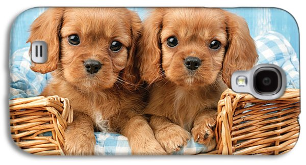 Puppy Digital Art Galaxy S4 Cases - Two Puppies in Woven Basket DP709 Galaxy S4 Case by Greg Cuddiford