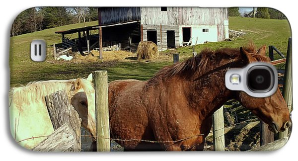 Two Quarter Horses In A Barnyard Galaxy S4 Case by Chris Flees
