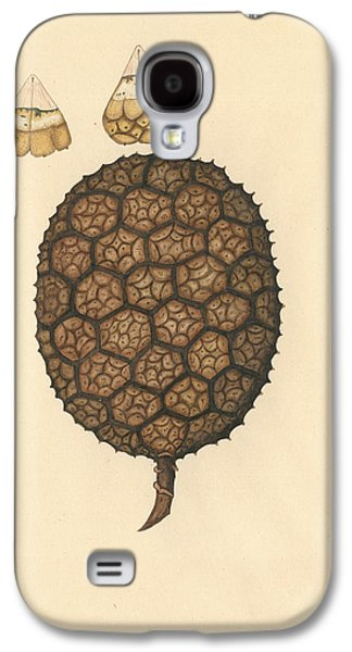 Umbrella Tree Galaxy S4 Case by Natural History Museum, London