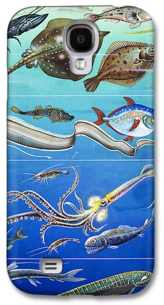 Blue And Green Galaxy S4 Cases - Underwater Creatures Montage Galaxy S4 Case by English School