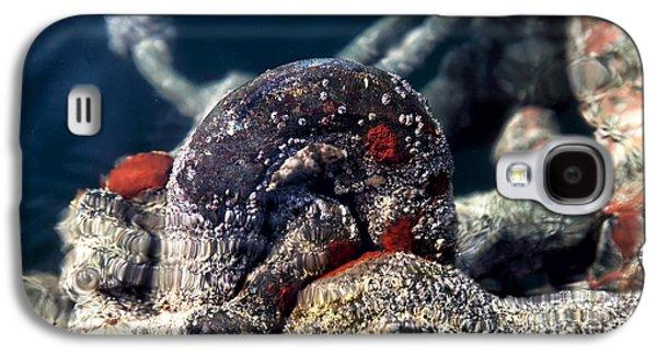Underwater Photos Galaxy S4 Cases - Underwater Iron Ring Galaxy S4 Case by John Rizzuto