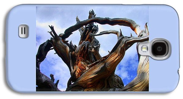Tree Roots Photographs Galaxy S4 Cases - Uprooted Beauty Galaxy S4 Case by Shane Bechler