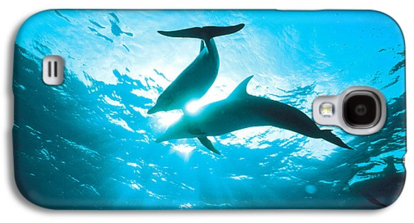 Under Water. Nature Galaxy S4 Cases - Upward View Of Two Silhouetted Dolphins Galaxy S4 Case by Panoramic Images