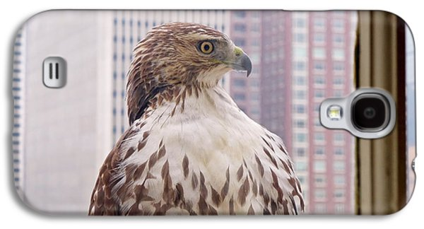 Black And White Art Galaxy S4 Cases - Urban Red-tailed Hawk Galaxy S4 Case by Rona Black