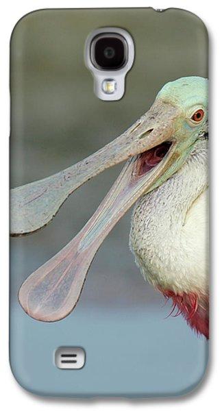 Usa, Florida, Fort De Soto Park Galaxy S4 Case by Jaynes Gallery