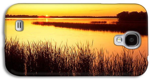 Sun Galaxy S4 Cases - Usa, Minnesota, Otter Tail County, Deer Galaxy S4 Case by Panoramic Images
