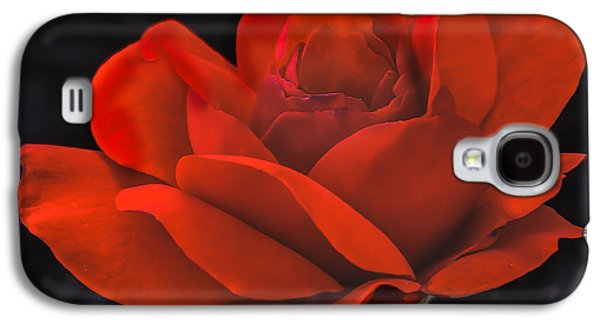 Haybale Galaxy S4 Cases - Valentine Rose Galaxy S4 Case by Robert Bales