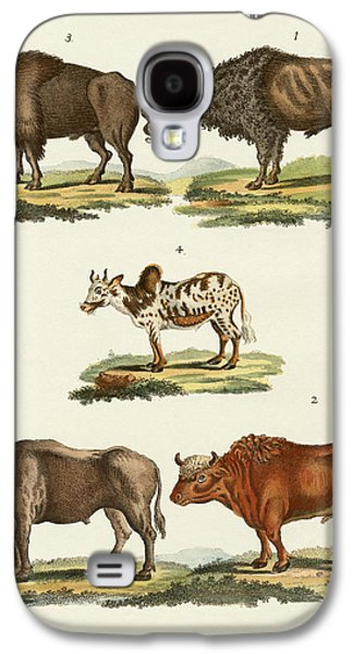 Bison Drawings Galaxy S4 Cases - Various kinds of oxen Galaxy S4 Case by Splendid Art Prints
