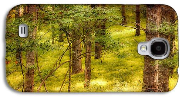 Paint Photograph Galaxy S4 Cases - Velvet Forest - Blue Ridge Parkway Galaxy S4 Case by Dan Carmichael