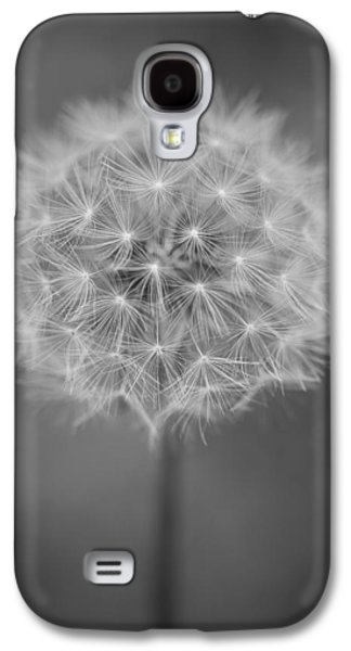 Weed Line Galaxy S4 Cases - Vermont-dandelion-puffball-Taraxacum officinale-black and white Galaxy S4 Case by Andy Gimino