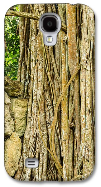 Gnarly Galaxy S4 Cases - Vertical Vines Galaxy S4 Case by Jess Kraft