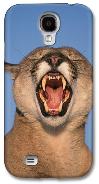 Growling Galaxy S4 Cases - V.hurst Tk21663d, Mountain Lion Growling Galaxy S4 Case by Victoria Hurst