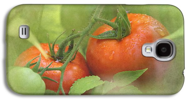 Vine Ripened Tomatoes Galaxy S4 Case by Angie Vogel