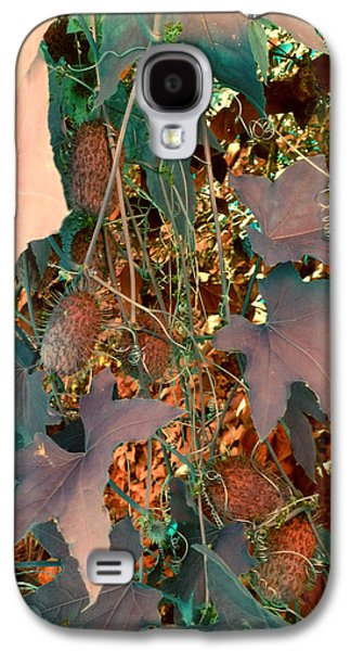 Vine Leaves Galaxy S4 Cases - Vines and Things Galaxy S4 Case by Joanne Smoley