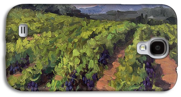 California Vineyard Galaxy S4 Cases - Vineyard at Dentelles Galaxy S4 Case by Diane McClary