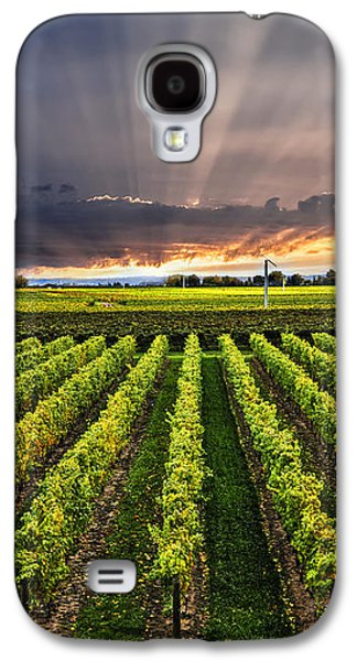 Wine Galaxy S4 Cases - Vineyard at sunset Galaxy S4 Case by Elena Elisseeva