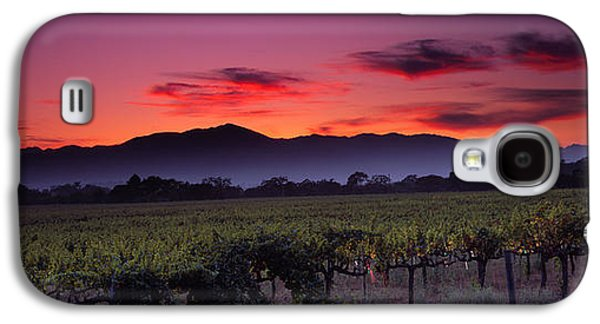 Napa Valley Vineyard Galaxy S4 Cases - Vineyard At Sunset, Napa Valley Galaxy S4 Case by Panoramic Images