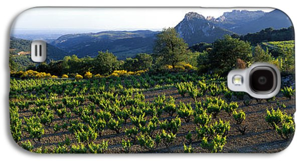 Grapevines Photographs Galaxy S4 Cases - Vineyard Dentelles De Montmirail Galaxy S4 Case by Panoramic Images
