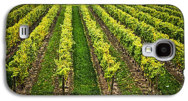 Grape Vineyard Galaxy S4 Cases - Vineyard Galaxy S4 Case by Elena Elisseeva