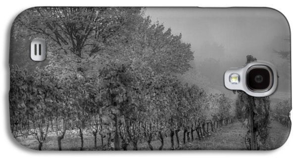 Vintner Galaxy S4 Cases - Vineyard Fog Galaxy S4 Case by Jean Noren