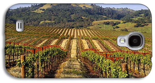Sonoma County Vineyards. Galaxy S4 Cases - Vineyard, Geyserville, California, Usa Galaxy S4 Case by Panoramic Images