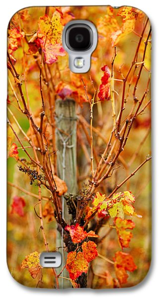Vineyard In Autumn, Gaillac, Tarn Galaxy S4 Case by Panoramic Images