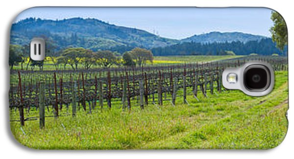 Sonoma County Vineyards. Galaxy S4 Cases - Vineyard In Sonoma Valley, California Galaxy S4 Case by Panoramic Images