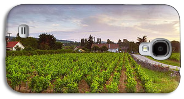 Winery Photography Galaxy S4 Cases - Vineyard, Mercurey, France Galaxy S4 Case by Panoramic Images