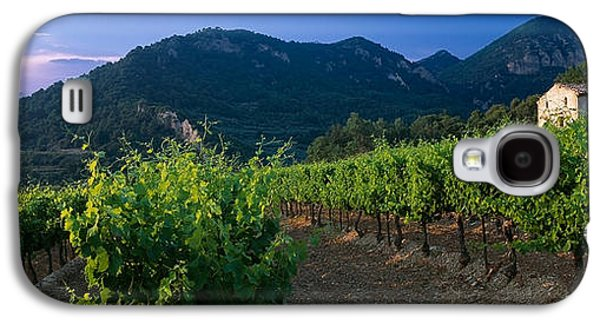 Winery Photography Galaxy S4 Cases - Vineyard, Provence-alpes-cote Dazur Galaxy S4 Case by Panoramic Images