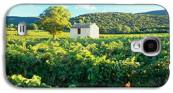 Winery Photography Galaxy S4 Cases - Vineyard Provence France Galaxy S4 Case by Panoramic Images