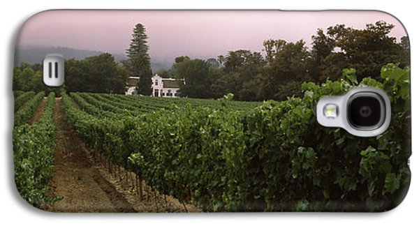 Somerset Galaxy S4 Cases - Vineyard With A Cape Dutch Style House Galaxy S4 Case by Panoramic Images