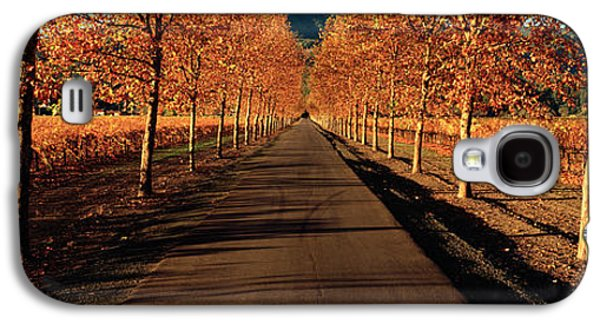 Vineyard In Napa Galaxy S4 Cases - Vineyards Along A Road, Beaulieu Galaxy S4 Case by Panoramic Images