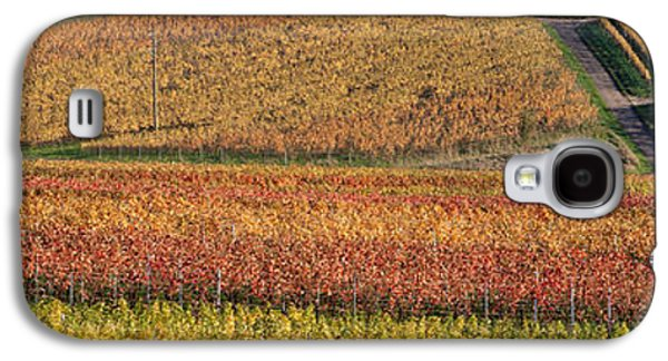 Wine Scene Galaxy S4 Cases - Vineyards In Autumn Near Gleisweiler Galaxy S4 Case by Panoramic Images