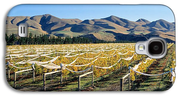 Winery Photography Galaxy S4 Cases - Vineyards N Canterbury New Zealand Galaxy S4 Case by Panoramic Images