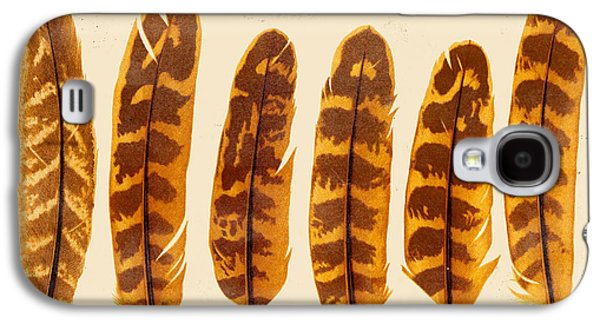 Nature Study Digital Art Galaxy S4 Cases - Vintage Feather Study-G Galaxy S4 Case by Jean Plout