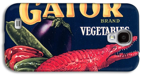 20s Galaxy S4 Cases - Vintage Florida Food Signs 6 - Red Gator Brand - Square Galaxy S4 Case by Ian Monk