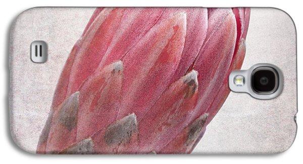 Studio Photographs Galaxy S4 Cases - Vintage protea Galaxy S4 Case by Jane Rix