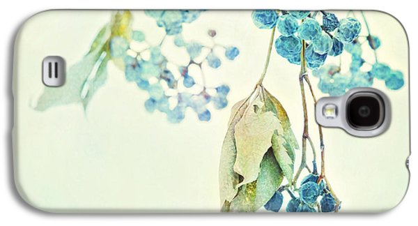 Winter Prints Photographs Galaxy S4 Cases - Virginia Creeper Berries Galaxy S4 Case by Theresa Tahara