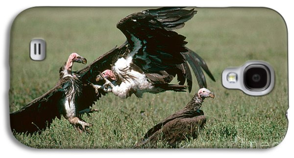 Vulture Fight Galaxy S4 Case by Gregory G. Dimijian, M.D.