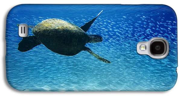 Ocean Art Photography Galaxy S4 Cases - Waimea Turtle Galaxy S4 Case by Sean Davey