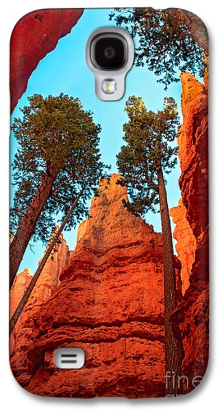 Haybale Photographs Galaxy S4 Cases - Wall Street Galaxy S4 Case by Robert Bales