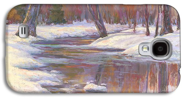 Winter Scene Pastels Galaxy S4 Cases - Warm Winter Reflections Galaxy S4 Case by Billie Colson