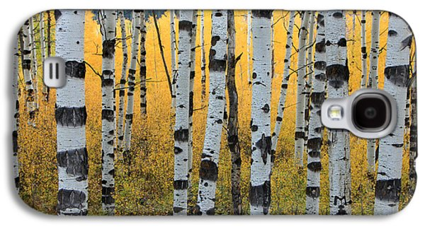 Trees Photographs Galaxy S4 Cases - Wasatch Aspens Galaxy S4 Case by Johnny Adolphson