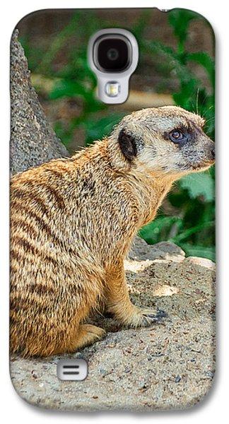 Watchful Meerkat Vertical Galaxy S4 Case by Jon Woodhams