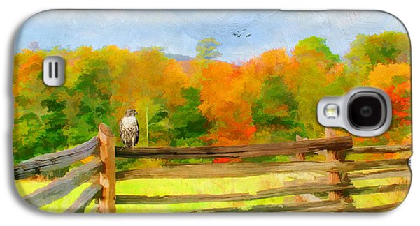 Split Rail Fence Galaxy S4 Cases - Watching Autumn Galaxy S4 Case by Darren Fisher