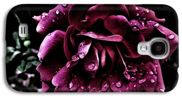 Knockout Digital Art Galaxy S4 Cases - Water Droplets on a Beautiful Rose Galaxy S4 Case by Constance Carlsen