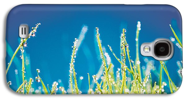 Close Focus Nature Scene Galaxy S4 Cases - Water Droplets On Blades Of Grass Galaxy S4 Case by Panoramic Images